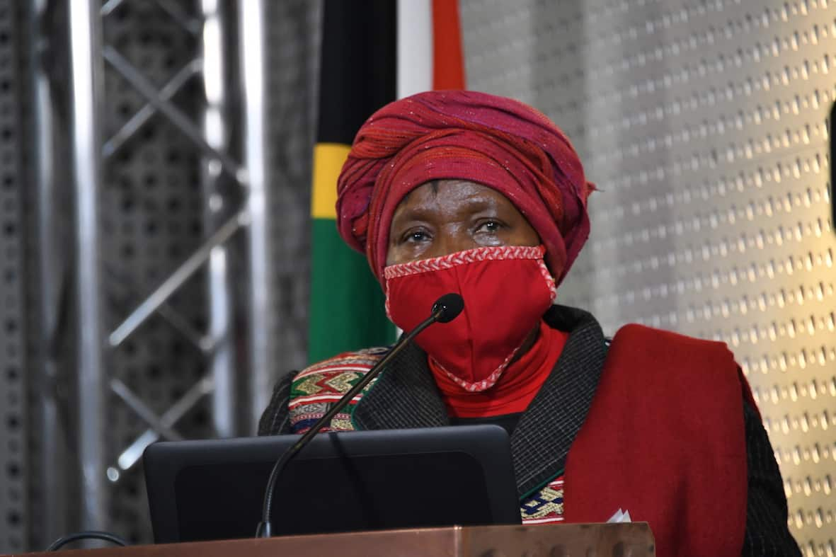 a8293752 dlamini zuma lockdown black october